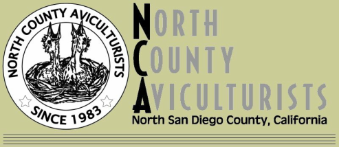 North County Aviculturists BIRD CLUB General MEETING